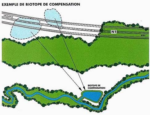Biotope de compensation