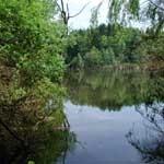Biotopes
