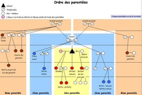 Schéma desriptif de l'ordre des parentèles