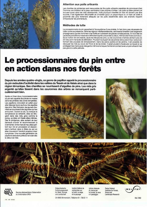 Affiche d'information sur les chenilles processionnaires des pins - (c) WSL
