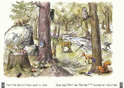 Image d'une forêt remplie d'animaux de toute sorte